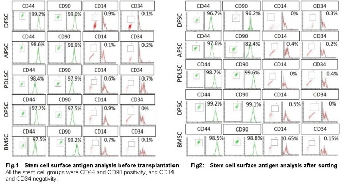 Stem cell analysis before transplantation & after sorting